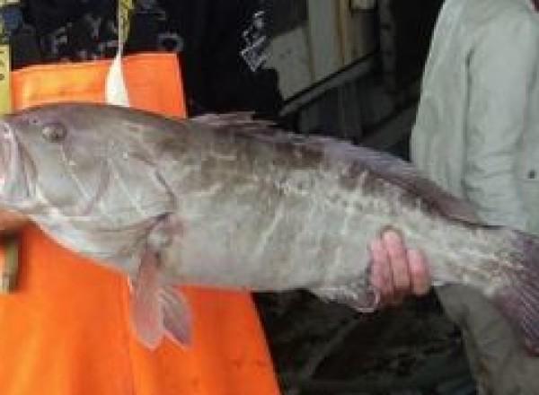 pescaturismo_2