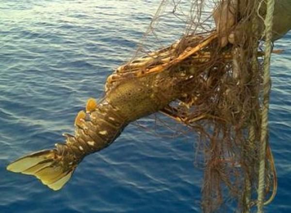 pescaturismo_3